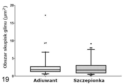 Obszar ze skupiskami glinu (Al) w makrofagach ziarniniaka.
