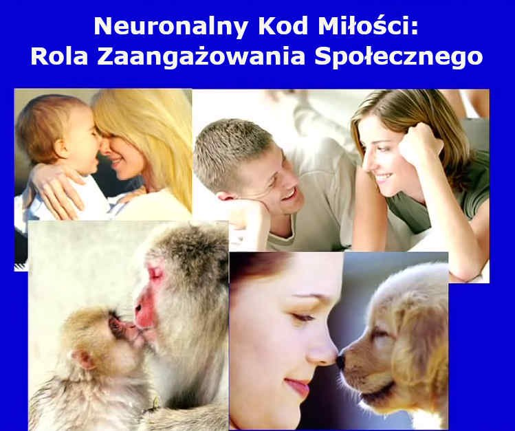 Neuronalny kod miłości