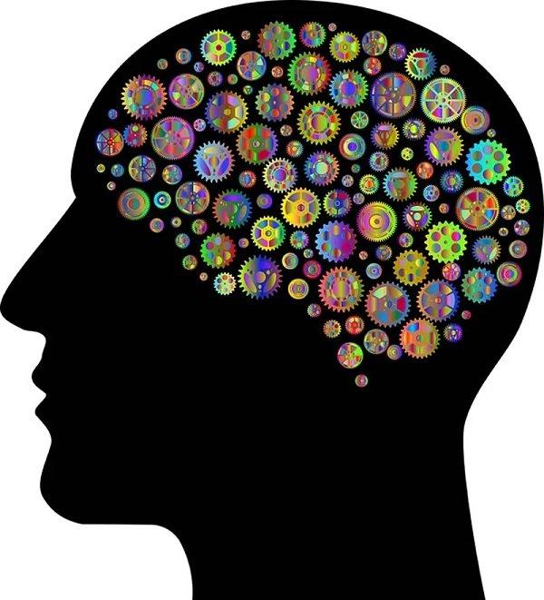Odpowiedź immunologiczna atakująca komórki mózgowe u osób z diagnozą autyzmu