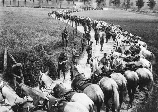 Pandemia hiszpańskiej grypy w latach 1918–1919