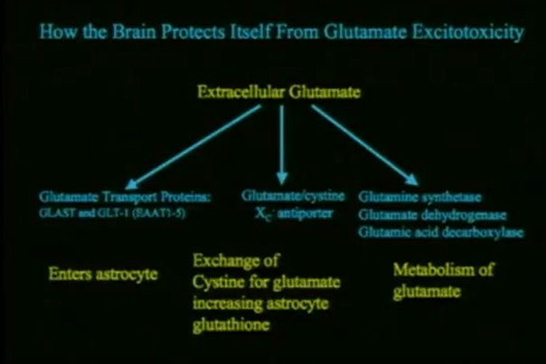 Mechanizm opisujący jak szczepionki wywołują autyzm - ekscytotoksyczność glutaminianu