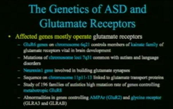geny najczęściej kojarzone z autyzmem i receptory glutaminianu