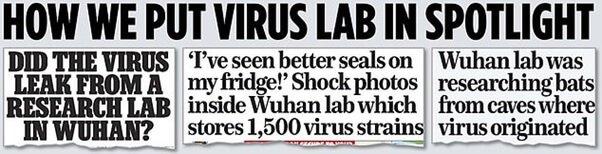 Niektóre z tegorocznych artykułów Mail on Sunday o laboratorium w Wuhan