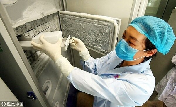 Narodowy Instytut Zdrowia pyta, czy Covid-19 był powiązany ze śmiercią trzech górników osiem lat temu i wyraził wątpliwość, czy laboratorium o wysokim poziomie bezpieczeństwa w Wuhan nie posiadało próbek wirusa przed wybuchem pandemii pod koniec zeszłego roku. Na zdjęciu powyżej pracownik laboratorium