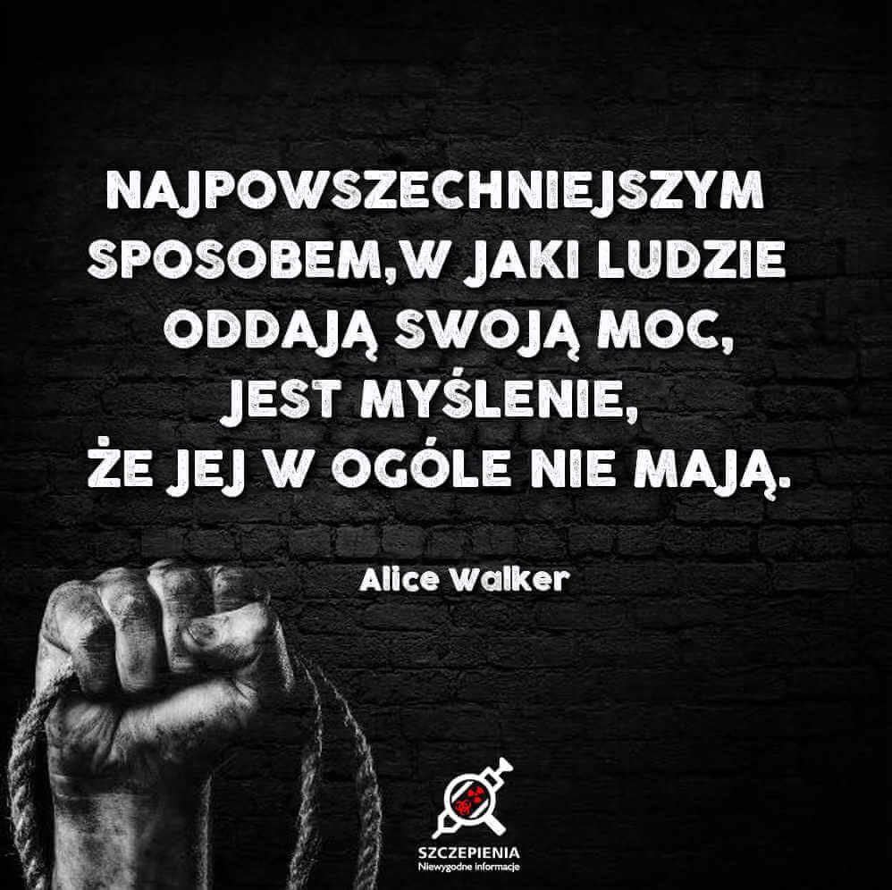 """""""Najpowszechniejszym sposobem, w jaki ludzie oddają swoją moc, jest myślenie, Że jej w ogóle nie mają"""" - Alice walker"""