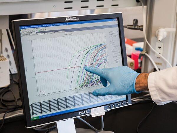 Na ekranie pojawiają się pomiary ilości wirusa w próbkach kurzu z fermy drobiu
