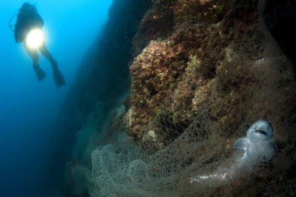 Porzucone, zagubione i wyrzucone narzędzia połowowe nadal zabijają morskie zwierzęta - Źródło plastiku w oceanie